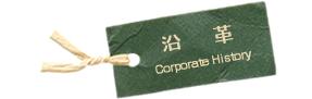 corporate history 沿革